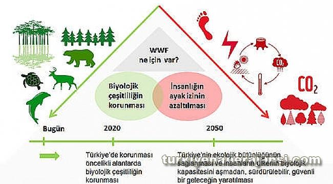 'WWF-Türkiye' 40. Yılını Kutluyor