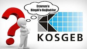 Erzurum KOSGEB'i Bingöl KOSGEB'e Vekâleten Bağladılar