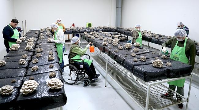 Engelliler Hem Terapi Görüyor Hem De Meslek Öğreniyorlar
