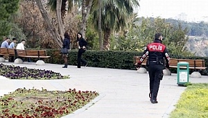 Antalya'da Parkta Arı Dehşeti!