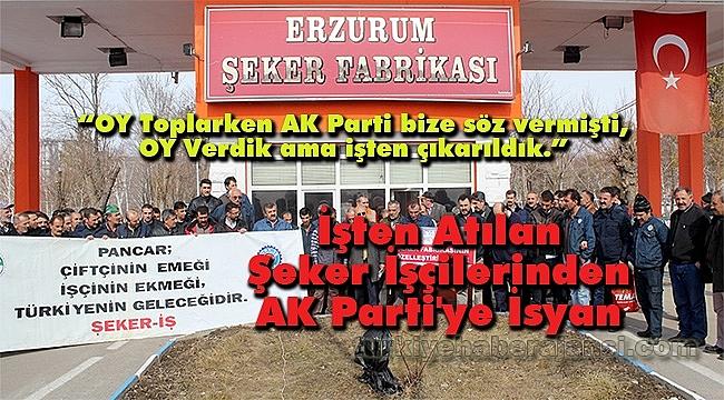 İşten Atılan Şeker İşçilerinden AK Parti'ye İsyan
