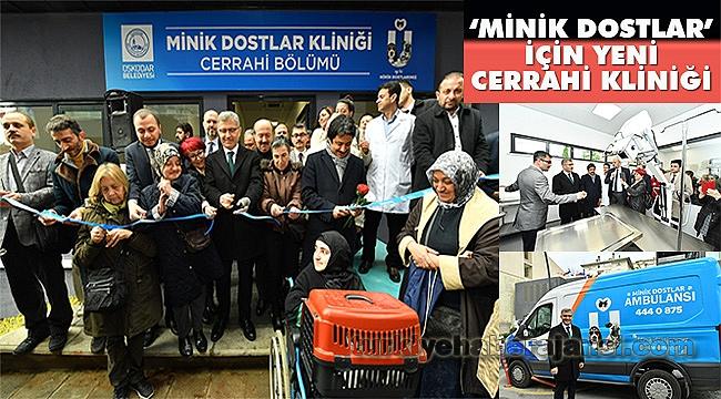 Üsküdar Belediyesi'nden 'Minik Dostlar' İçin Yeni Cerrahi Kliniği