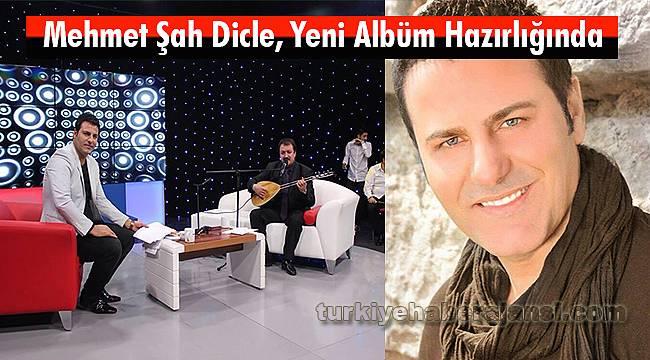 Mehmet Şah Dicle, Yeni Albüm Hazırlığında