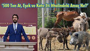 '500 Ton At, Eşek ve Katır Eti İthalindeki Amaç Ne?'