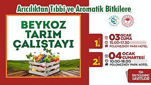 Beykoz'da Tarım Çalıştayı Düzenlenecek
