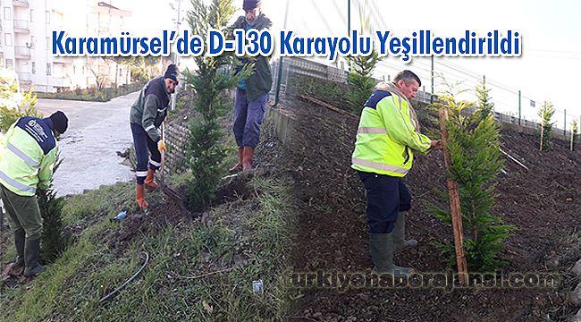 Karamürsel'de D-130 Karayolu Yeşillendirildi