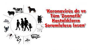 'Koronavirüs de ve Tüm 'Zoonotik' Hastalıkların Sorumlulusu İnsan'