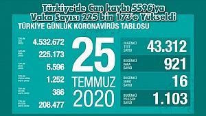 Türkiye'de Can kaybı 5596'ya Vaka Sayısı 225 bin 173'e Yükseldi