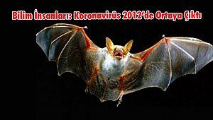 Bilim İnsanları: Koronavirüs 2012'de Ortaya Çıktı