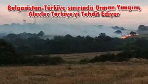 Bulgaristan-Türkiye sınırında Orman Yangını, Alevler Türkiye'yi Tehdit Ediyor