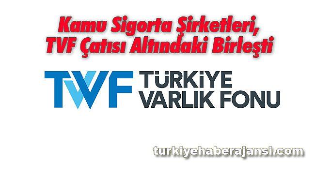 Kamu Sigorta Şirketleri, TVF Çatısı Altındaki Birleşti