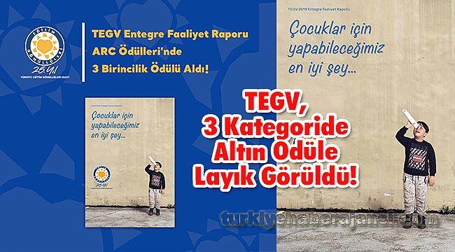TEGV, 3 Kategoride Altın Ödüle Layık Görüldü!