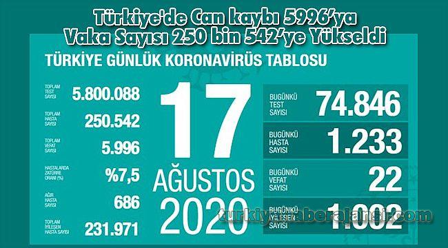 Türkiye'de Can kaybı 5996'ya Vaka Sayısı 250 bin 542'ye Yükseldi
