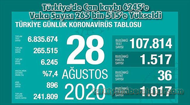 Türkiye'de Can kaybı 6245'e Vaka Sayısı 265 bin 515'e Yükseldi