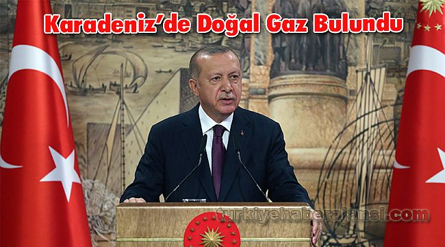 'Türkiye, Tarihinin en Büyük Doğal Gaz Keşfini Karadeniz'de Gerçekleştirdi'