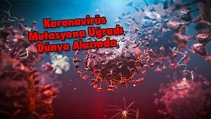 Koronavirüs Mutasyona Uğradı Dünya Alarmda
