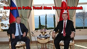 Erdoğan ve Putin, Temel Atma Törenine Katılacak