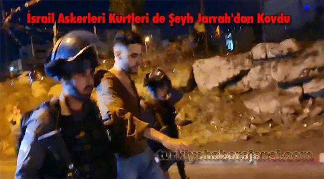 İsrail Askerleri Kürtleri de Şeyh Jarrah'dan Kovdu