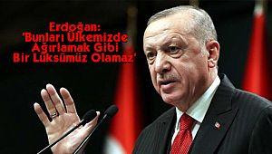 Erdoğan: 'Bunları Ülkemizde Ağırlamak Gibi Bir Lüksümüz Olamaz'