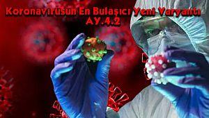 Koronavirüsün En Bulaşıcı Yeni Varyantı AY.4.2