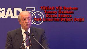 TÜSİAD YİK Başkanı Özilhan: Düşen Sadece Türk Lirası'nın Değeri Değil