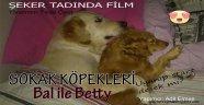 Bu Filmin Baş Rolde Sokak Köpekleri ve Çocuklar Var