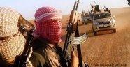 IŞİD, Pusu Kurdu: 50 Ölü