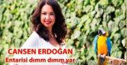Cansen Erdoğan'ın son yazısı Entarisi dımm dımm yar!