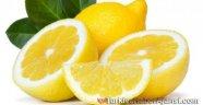 Hastalıklardan Kurtulmak İçin Dondurulmuş Limon! ...