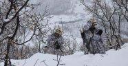 Bingöl'de PKK'ya Büyük Darbe