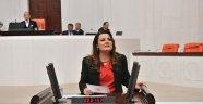 CHP'li Hürriyet'ten Anayasa Açıklaması