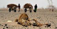 'İklim Değişikliği Yüz Binlerce Kişiyi Öldürecek'