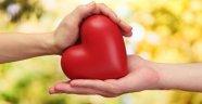 Kalp İçin Altın Besinler