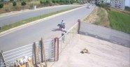 Köpeği Pompalı Tüfekle Acımazca Öldürdü!