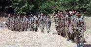 PKK'nın Sincar'dan Sonraki Hedefi Belli Oldu!