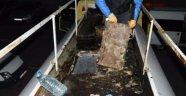 Tankerin İçinden 234 Kilo Eroin Çıktı